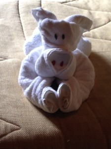 Towel Animals and Folds