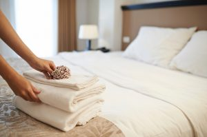 Making Your Hotel the Hottest Spot: What You Need to Know on wholesale.bocaterry.com